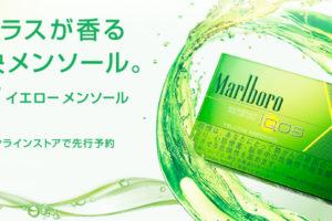 IQOSから新フレーバー「イエローメンソール」が発売!全国発売は6/29!