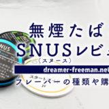 JTの無煙たばこ「SNUS(スヌース)」レビュー!フレーバーの種類や購入方法など